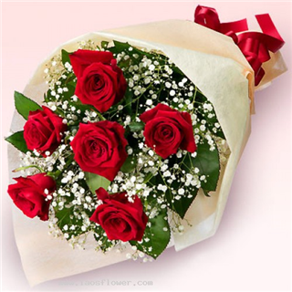 Half Dozen Roses Wrapped