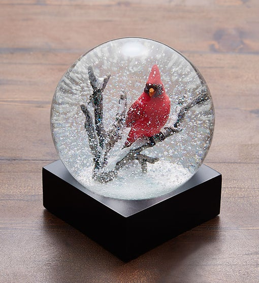 Cardinal Snow Globe by CoolSnowGlobes