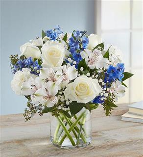 Serene Wishes in Cylinder vase