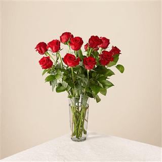 Long Stem Beauties - Red