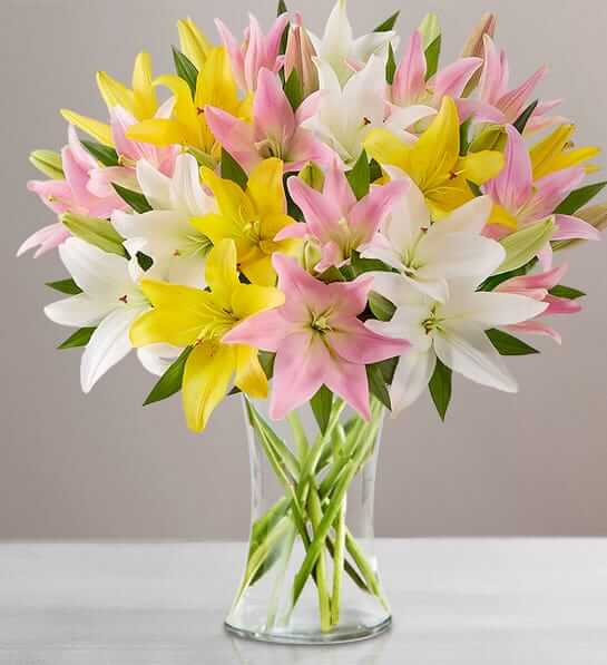 Sweet Spring Lilies for Mother's Day
