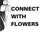 Niceville Florist