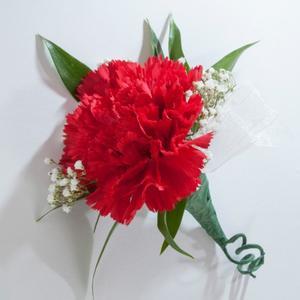 Boutonniere - Carnation
