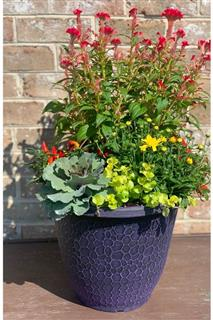 Fall Deck Planter