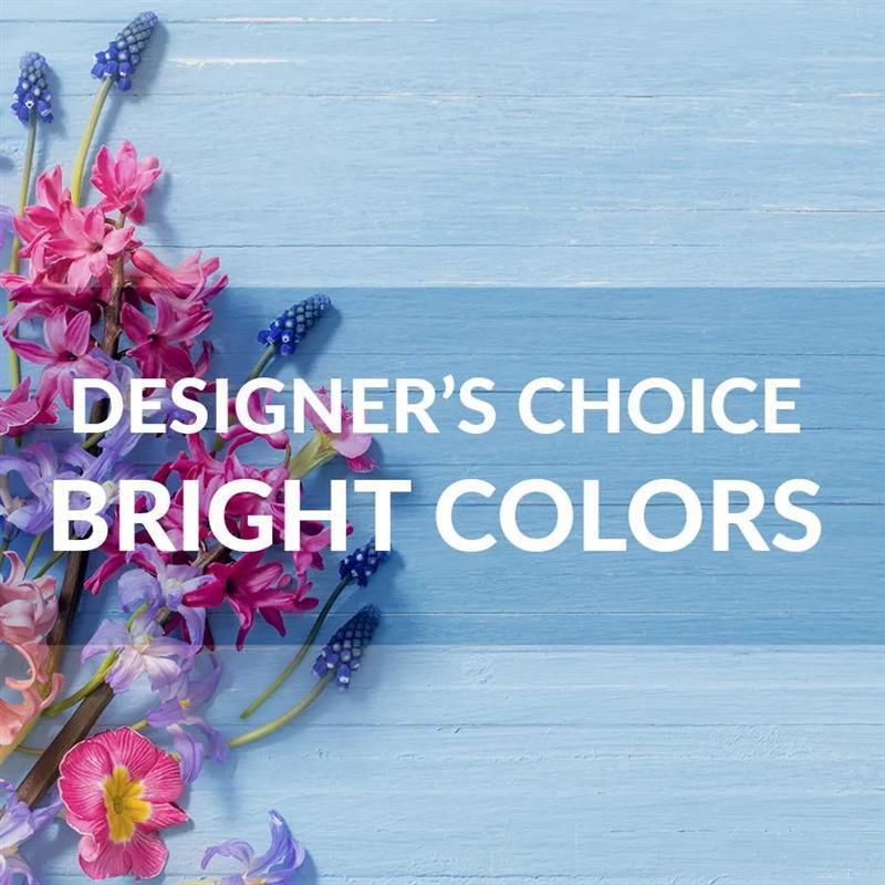 Designer's Choice: Bright Colors