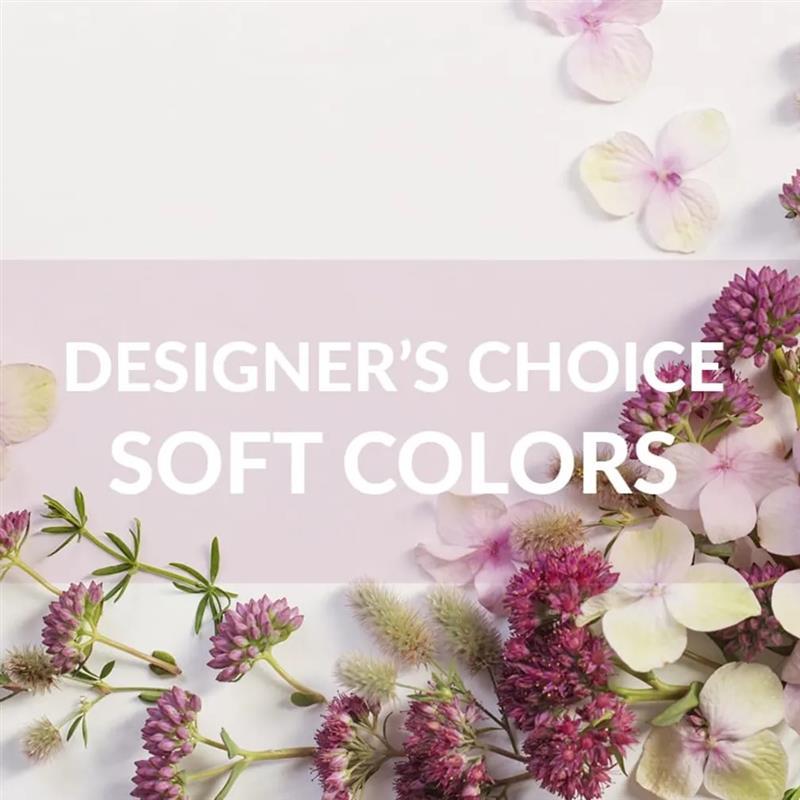 Designer's Choice: Soft Colors
