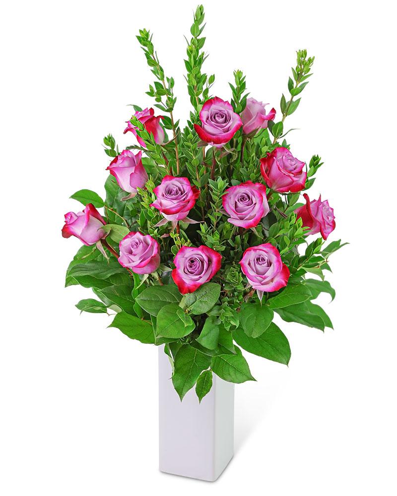 Lovely Lavender Roses (12)