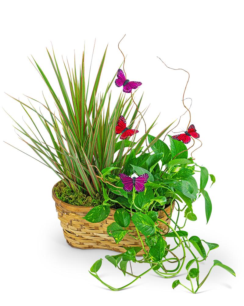 Ethereal Garden Basket