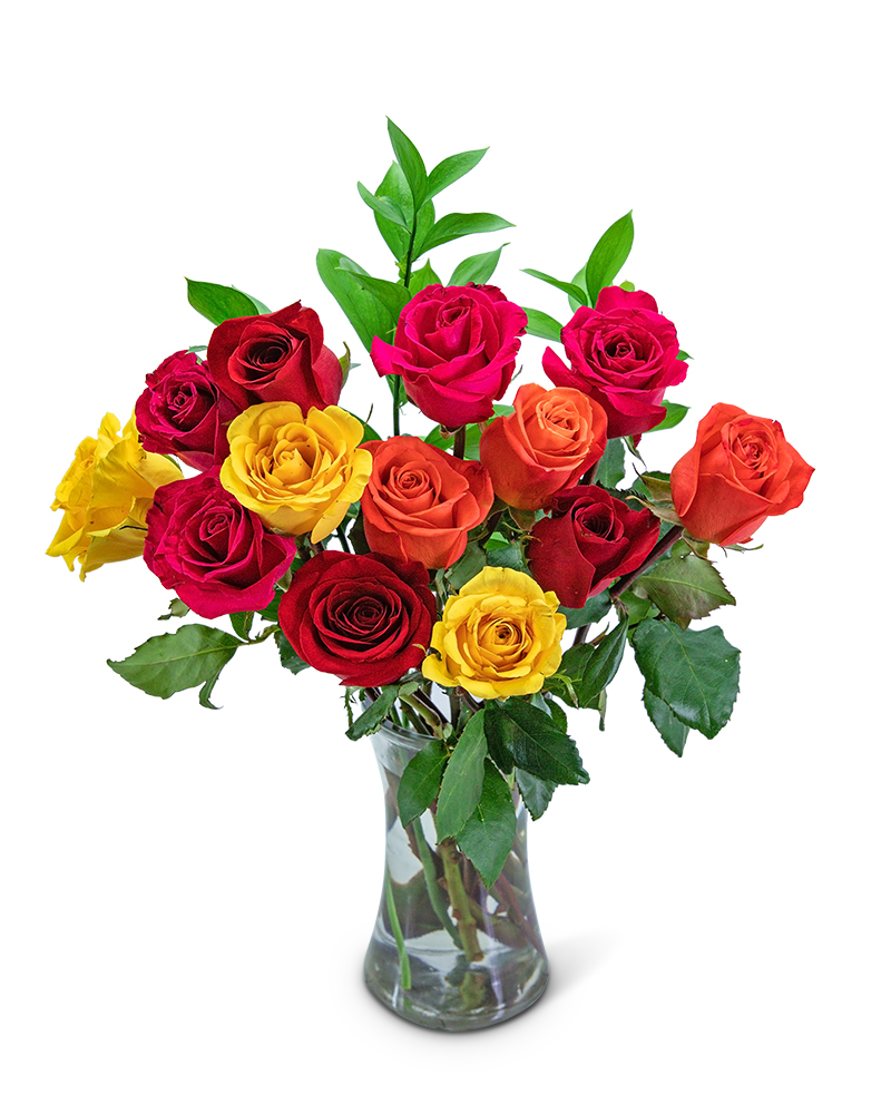 Rainbow Road Roses
