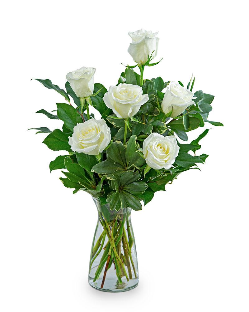 White Roses (6)