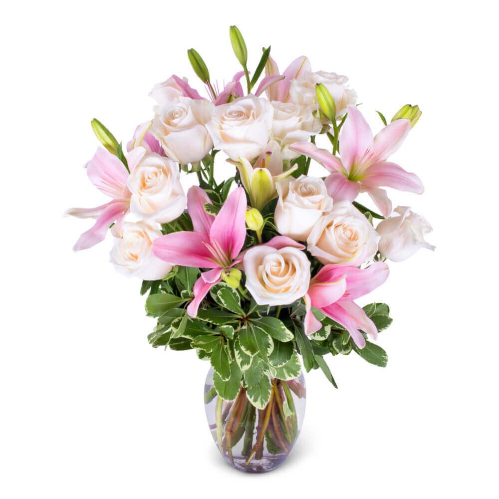 Lily & Rose Romance