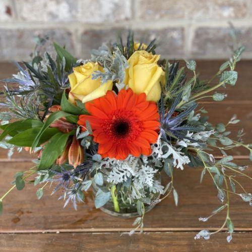 Thistle & Bloom