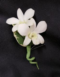 Boutonniere - Orchid
