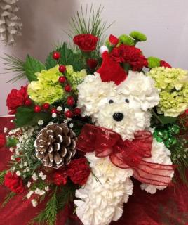 Santa Doggie Treat - Special #1