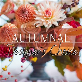 Autumnal Designers Choice