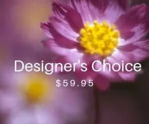Designer's Choice 59.95