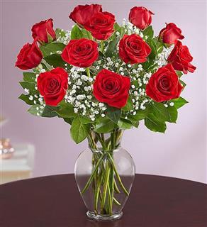 Premium Long Stem Red Rose Dozen