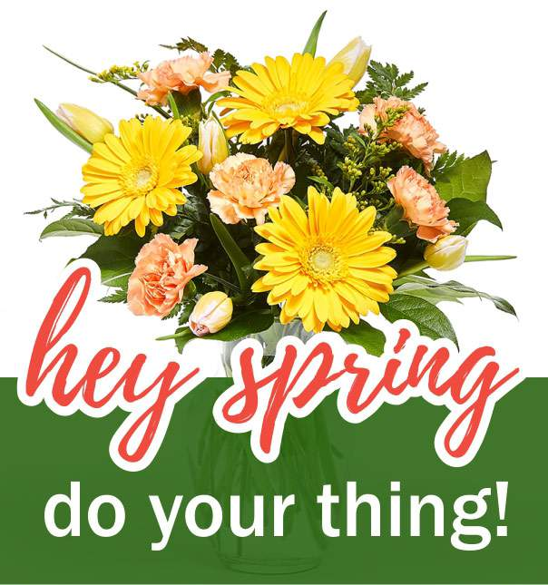 Hey Spring do your thing banner